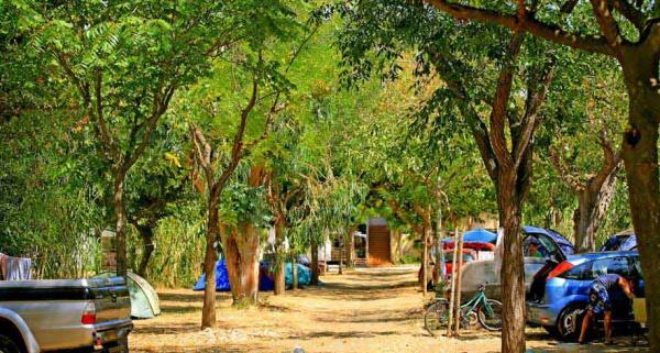 Camping L'Isle D'Or, Hyeres